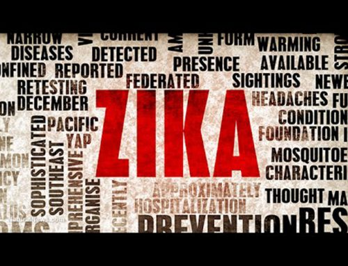 ZIKA: The History, the Risks and the Scientific Developments